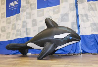 Inflatable dolphin for crowd interaction