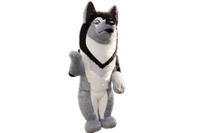 The Chukchi Sledge Dog (furry)